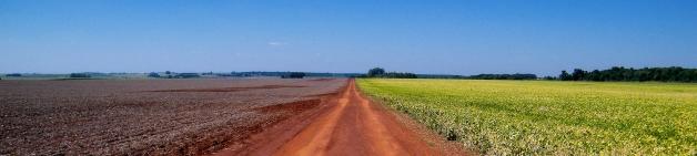 farm1_crop