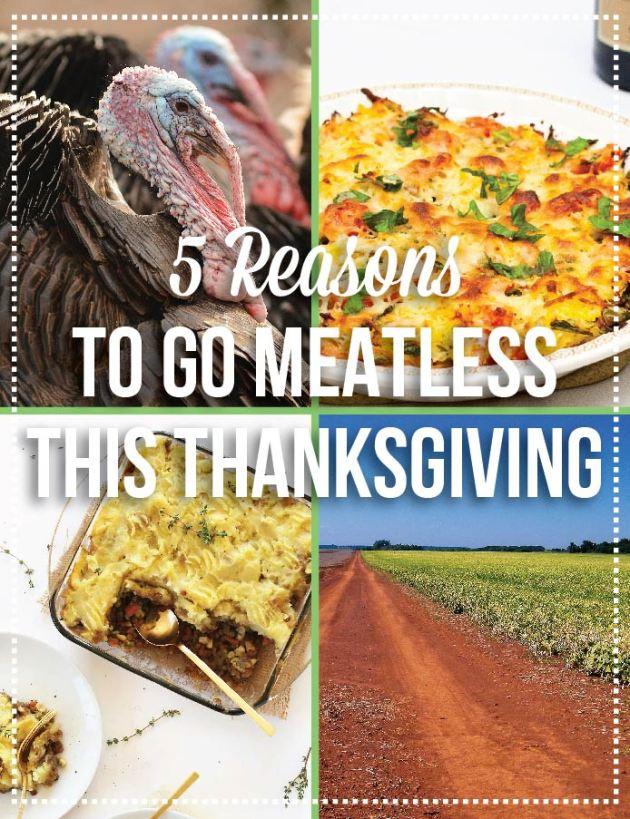 Go Meatless & Vegetarian Thanksgiving